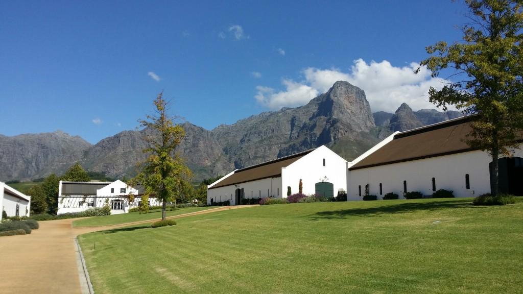 Wine Farm 4