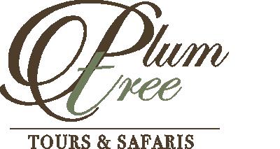 Plumtree Tours
